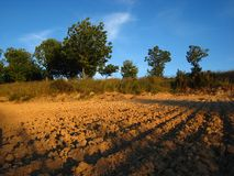 Furrows plowed into a dirt field Royalty Free Stock Photo