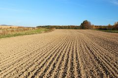 The furrows of the plowed field at the edge of the forest. royalty free stock image