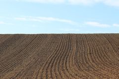 Furrows row pattern in a plowed field prepared for planting crops in spring. Horizontal view in perspective. stock images
