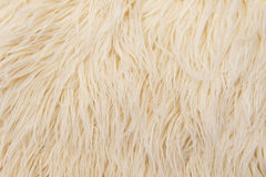 Furry background Royalty Free Stock Photos