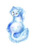 Furry cat Royalty Free Stock Images