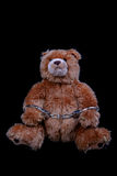 Furry Convict. Bear in Cuffs royalty free stock photos