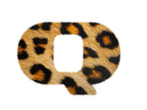 Furry font made of leopard skin texture. Stock Photo