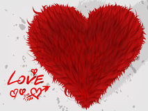 Furry heart Royalty Free Stock Image