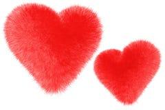 Furry Hearts Royalty Free Stock Photo