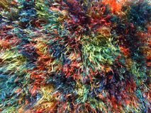 Furry multicolored fabric texture, nice vivid rainbow colors. Cheerful design Stock Images