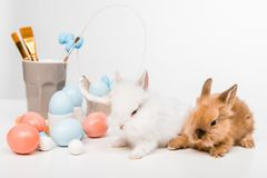 Furry rabbits and painted easter eggs on white. Cute furry rabbits and painted easter eggs on white Stock Photo