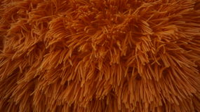 Furry Shaggy piece of a pillow cover in dry orange color Stock Photos