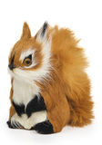 Furry squirrel toy Royalty Free Stock Images