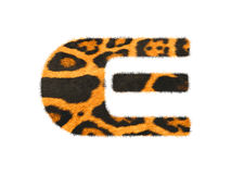 Furry text letter made of cheetah skin texture. Illustration of letter  on white Stock Images