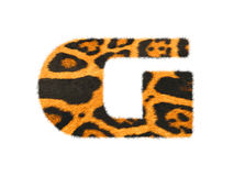 Furry text letter made of cheetah skin texture. Royalty Free Stock Image
