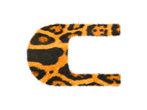Furry text letter made of cheetah skin texture. Stock Photos