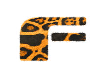 Furry text letter made of cheetah skin texture. Royalty Free Stock Photos