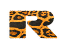 Furry text letter made of cheetah skin texture. Stock Image