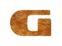 Furry text made of cat fur texture. Royalty Free Stock Photography