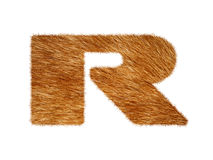 Furry text made of cat fur texture. Royalty Free Stock Photo