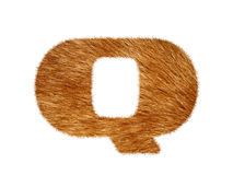 Furry text made of cat fur texture. Stock Photo