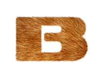 Furry text made of cat fur texture. Royalty Free Stock Photos