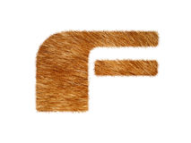 Furry text made of cat fur texture. Stock Photography