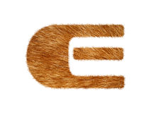 Furry text made of cat fur texture. Royalty Free Stock Images