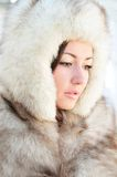 In furs Stock Images