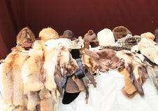 Furs and fur caps Royalty Free Stock Images