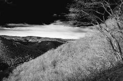 Furth en hiver Image libre de droits