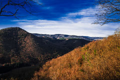 Furth in winter Stock Photography