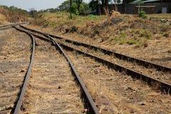 Fusão usada coberto de vegetação velha da interseção das trilhas railway Foto de Stock Royalty Free