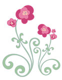 Fuschia Flowers. Fushia flowers with green curly stems on a white background vector illustration