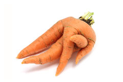 Fused orange carrot Royalty Free Stock Photo
