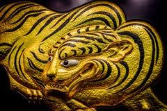 Fusetora (ä ¼  虎) Tygrysia grafika (Średni widok) Zdjęcia Royalty Free