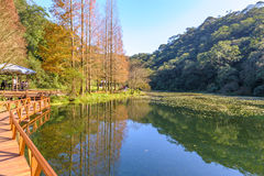 Fushan botanical garden royalty free stock image