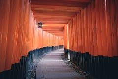 从Fushimi Inari寺庙Fushimi Inari Taisha的一千个Torii门在京都,日本 库存照片