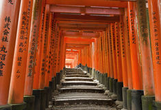 Fushimi Inari. Famous shinto shrine of Fushimi Inari Taisha near Kyoto includes around 1300 orange torii gates, Japan Royalty Free Stock Photos