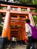 在Fushimi Inari寺庙的花托门 图库摄影
