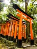 在Fushimi Inari寺庙的花托门 库存图片