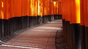 Fushimi Inari Imagens de Stock
