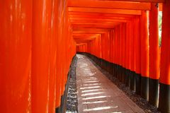 Fushimi Inari Fotografering för Bildbyråer