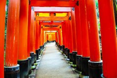 Fushimi Inari. Famous shrine with row of gates, Fushimi Inari Stock Photos