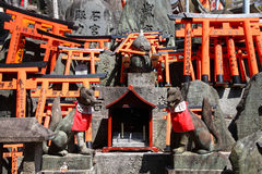 fushimi inari Japan Obrazy Royalty Free