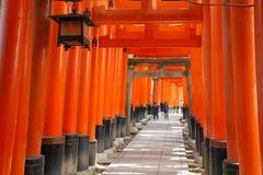 Fushimi Inari, Japonia Obrazy Royalty Free