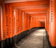 Fushimi Inari Taisha, Red Gate Walkway, Kyoto Japan Stock Photos