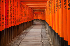 Fushimi Inari Shrine. Torii gates of Fushimi Inari Taisha Shrine in Kyoto, Japan Royalty Free Stock Photos