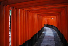 Fushimi Inari Shrine, Japan. Torii gates at Fushimi Inari Shrine, Japan Stock Image