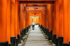 Fushimi-inari shrine in Japan Royalty Free Stock Images
