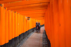 Fushimi Inari Shrine in Kyoto Japan Royalty Free Stock Photo