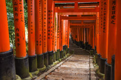 Fushimi Inari shrine in Kyoto, Japan Royalty Free Stock Image