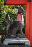 Fushimi Inari shrine in Kyoto, Japan. Fox statue in Fushimi Inari shrine in Kyoto, Japan Royalty Free Stock Photo
