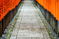 Fushimi Inari Shrine at Kyoto, Japan Stock Image
